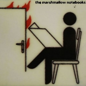 the marshmallow notebooks