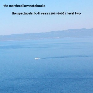 The spectacular lo-fi years (2001-2008) level two a