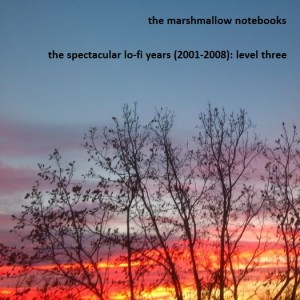 the spectacular lo-fi years (2001-2008) level three a
